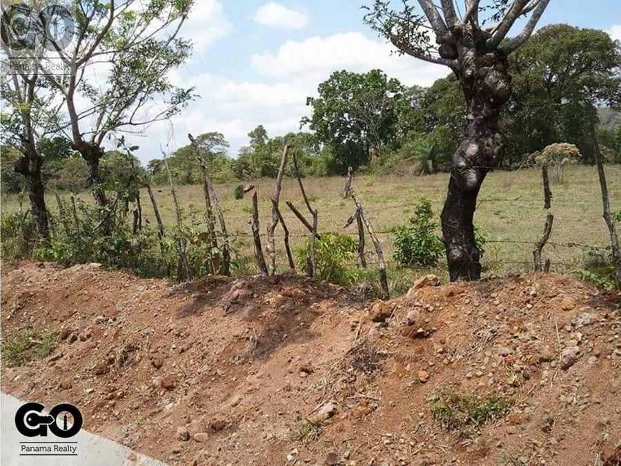 venta de terreno en chiriqui los algarrobos z c2