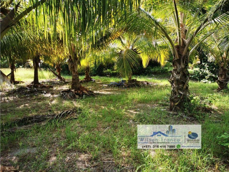lote terreno en venta isla baru cartagena