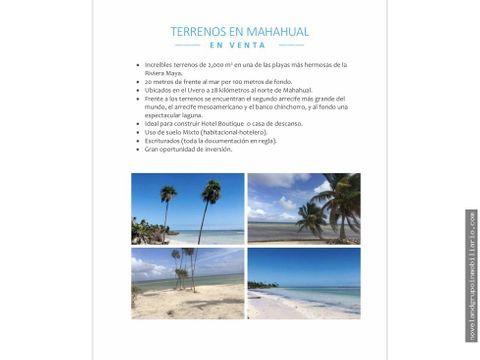 mahahual terrenos en venta