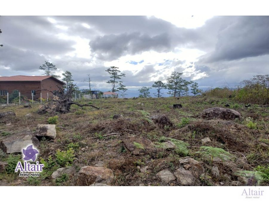 se vende terreno en bosques de zambrano