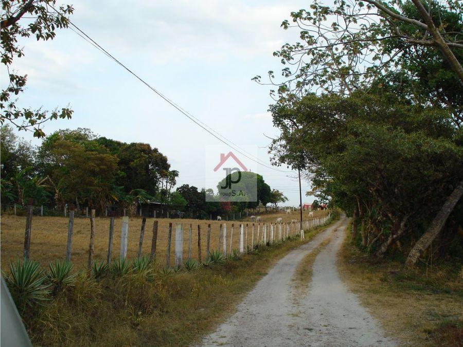 vendo terreno para desarrollo en penonome