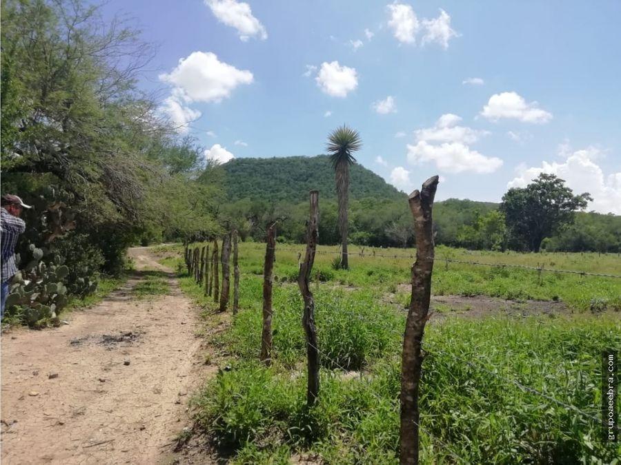 hectareas en llera tamaulipas