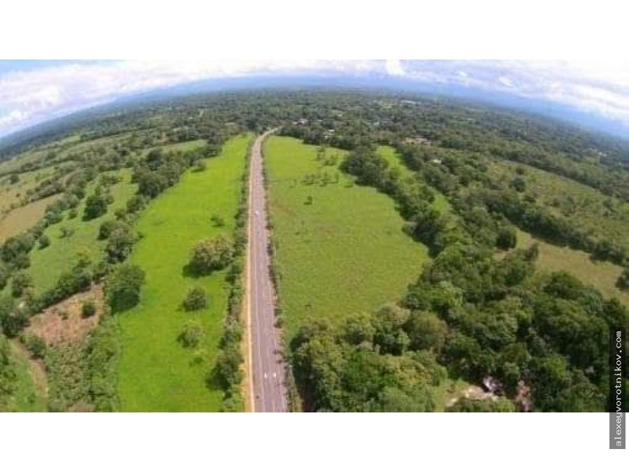 se vende dos finca de 4 hectareas y 7 hectareas a 75xmts