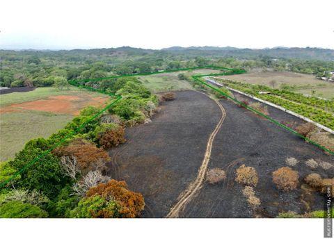 venta terreno 11 hectareas nances de esparza