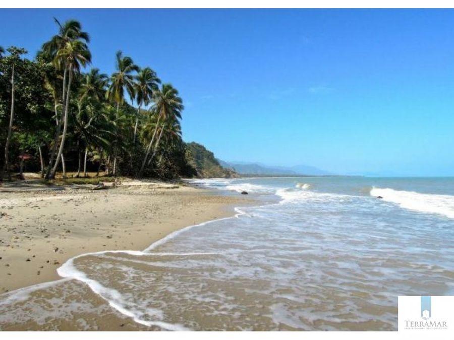 hostal en playa palomino