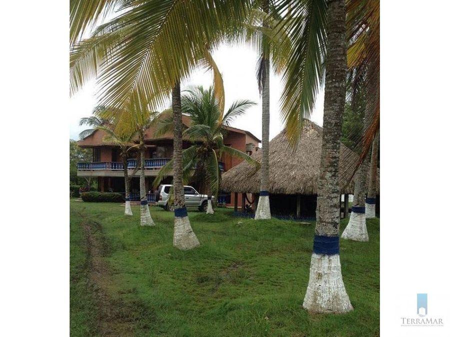 cabanas frente a la playa en puerto viejo
