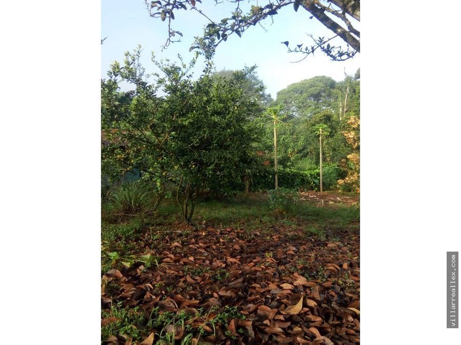 v57 espectacular lote en venta perez zeledon
