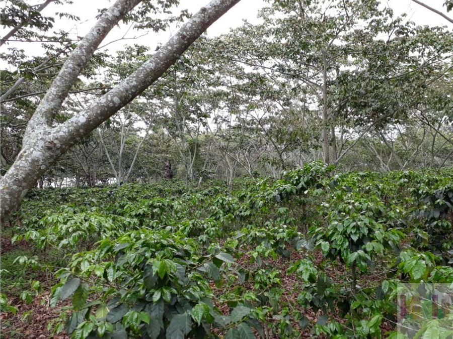 finca en venta amatitlan guatemala