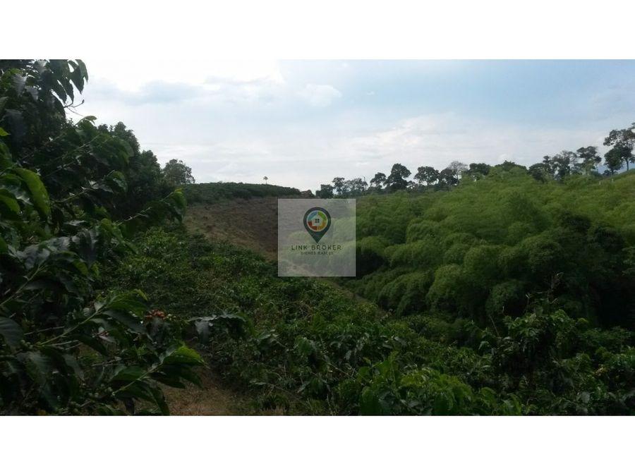venta finca sector betulia