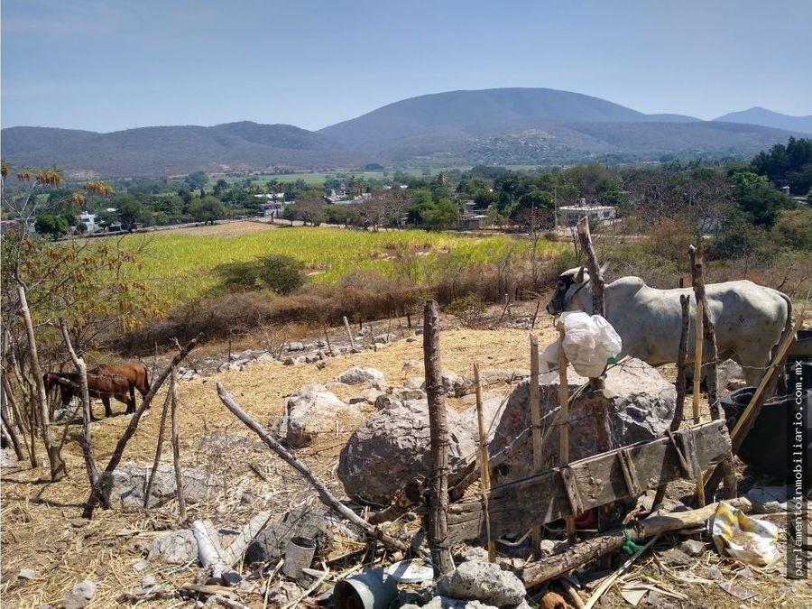 terreno en col alejandra tlaltizapan