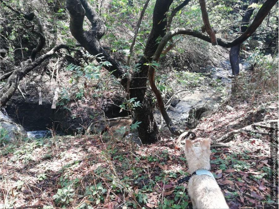 terreno en cuernavaca precio a tratar 3000 mts2