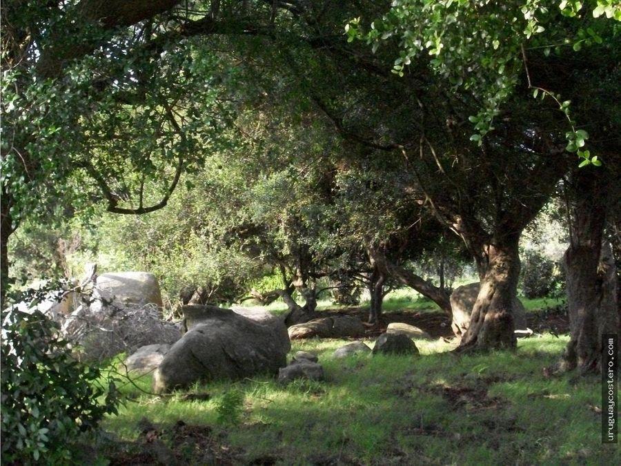 chacra con vista panoramica en las sierras de garzon