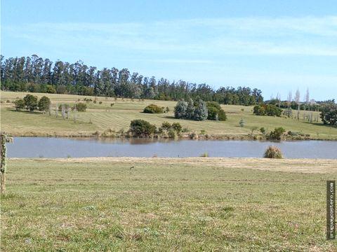 terreno 4000 m2 en pueblo mio sobre lago
