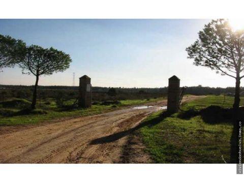 venta de terreno en almonte