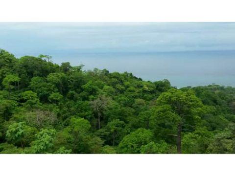 sea confiable vende terreno cambutal con 300 mt de playa