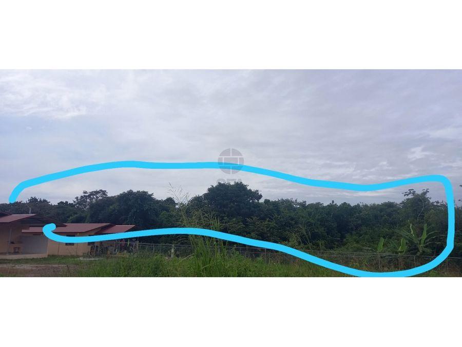 sea confiable vende terreno de 1 ha en la pena santiago de veraguas