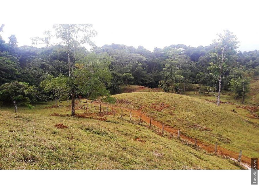 vendo terreno de montana en horquetas de sarapiqui heredia 30 millones