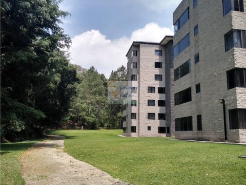 rento apartamento rodeado de arboles en zona 10