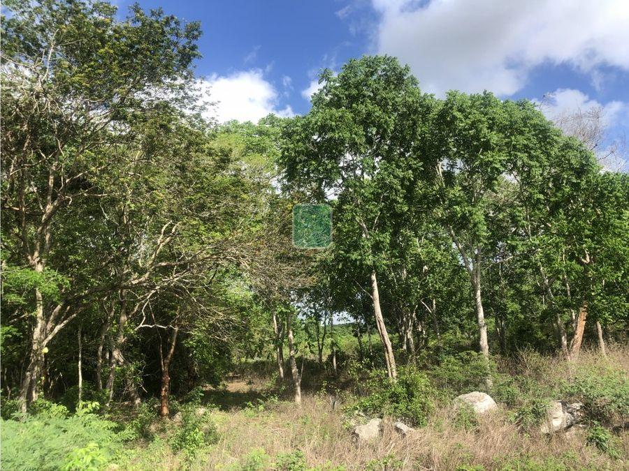 terreno en venta a 500 metros de temozon