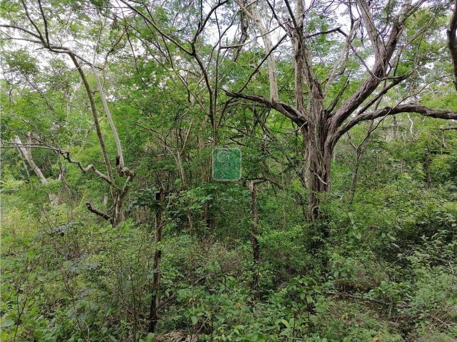 5 hectareas en periferico en venta