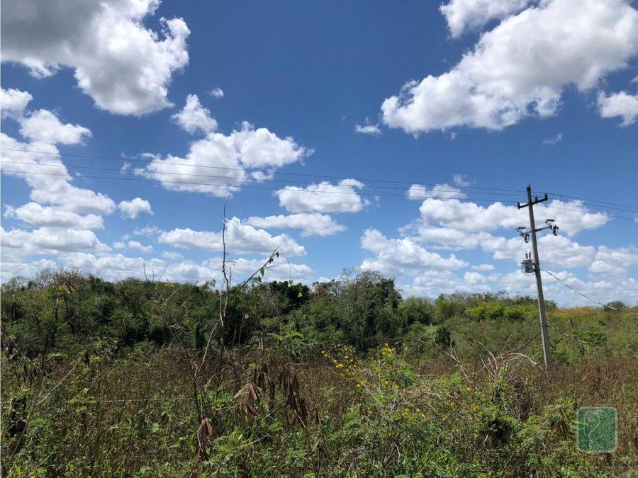 rancho en venta en temozon yucatan
