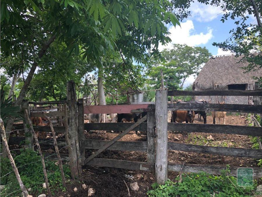 rancho ganadero en venta cerca de valladolid