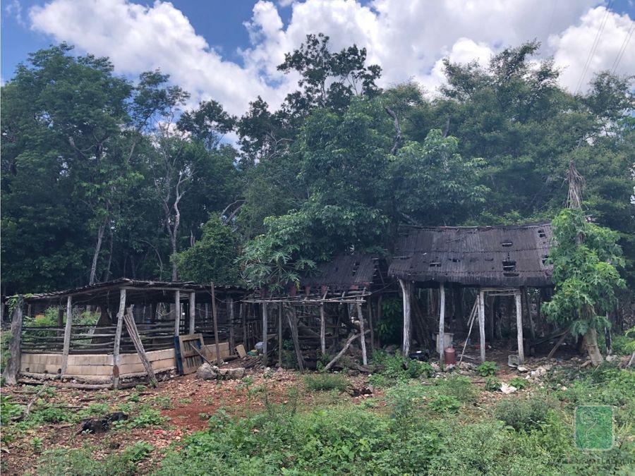 rancho en venta entre cuncunul y kaua