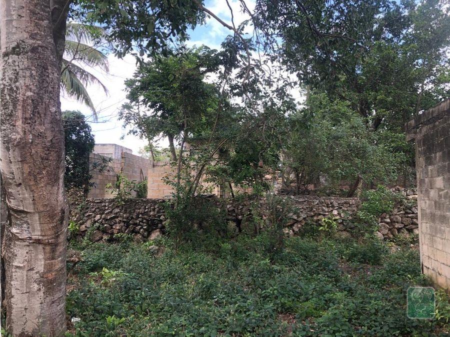 excelente terreno en venta en el barrio de sisal