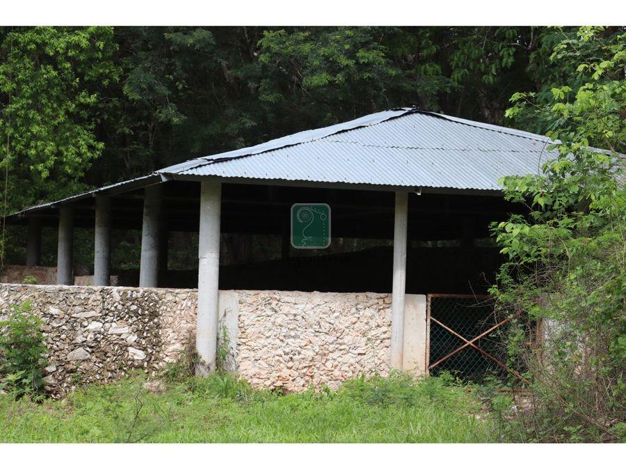 rancho chujuk en tinum en venta