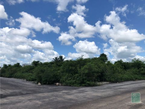 terreno en venta en campestre del pedregal