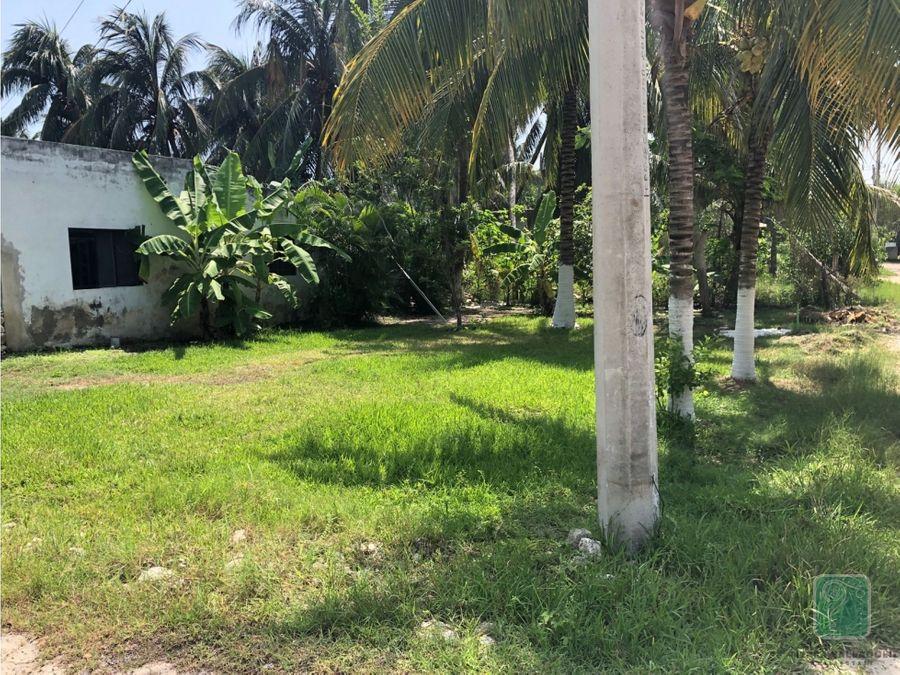 terreno en venta en el cuyo yucatan