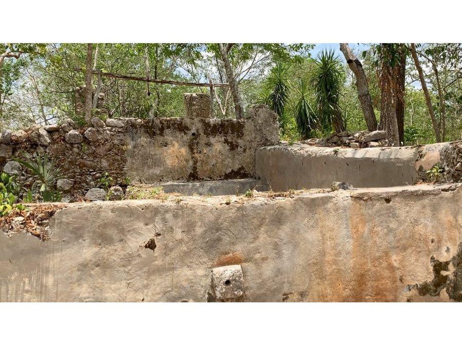 hacienda dzoyola en venta con 270 ha