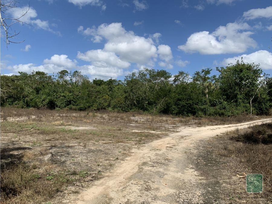 propiedad con cenote en renta