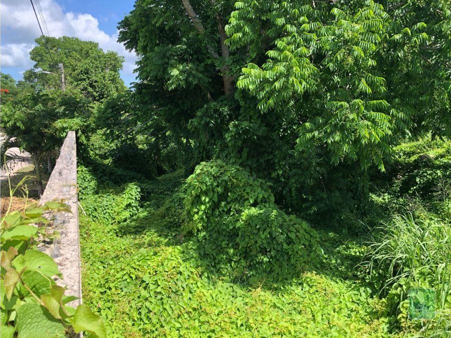terreno en venta en valladolid yucatan