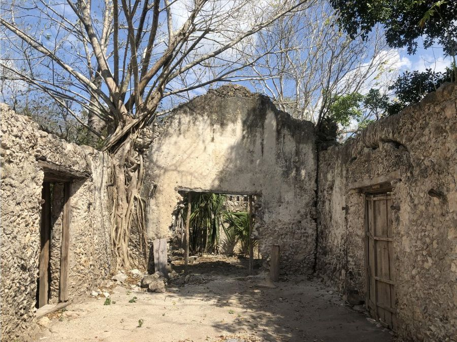 venta de propiedad con cenotes en tixcacalcupul