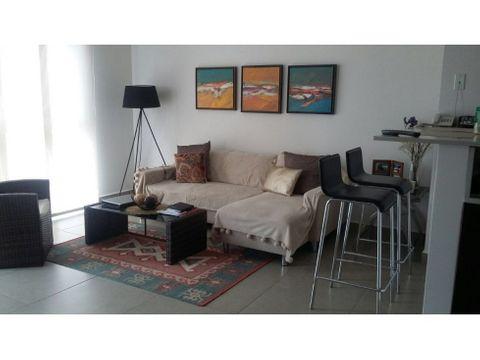 alquiler apartamento 1 habitacion mosaic
