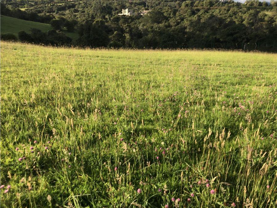 vendo espectacular lote en yerbabuena sopo