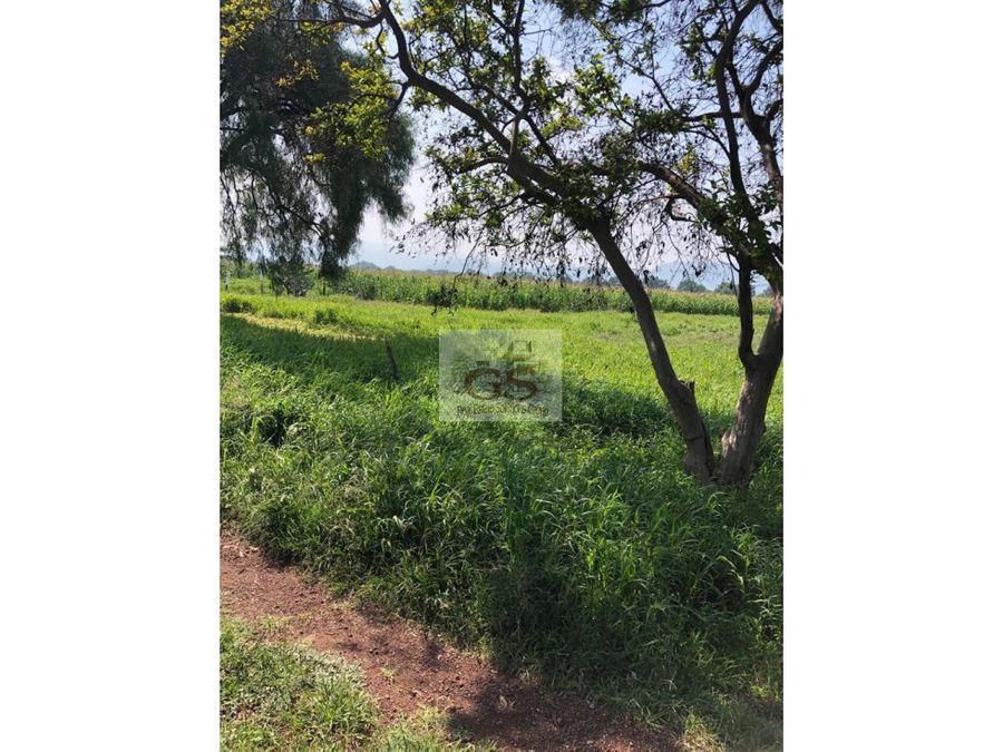 terreno en venta trojes 7 hectareas celaya
