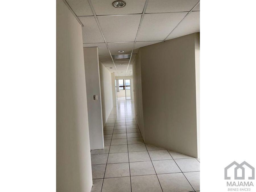 zona 12 rento oficina