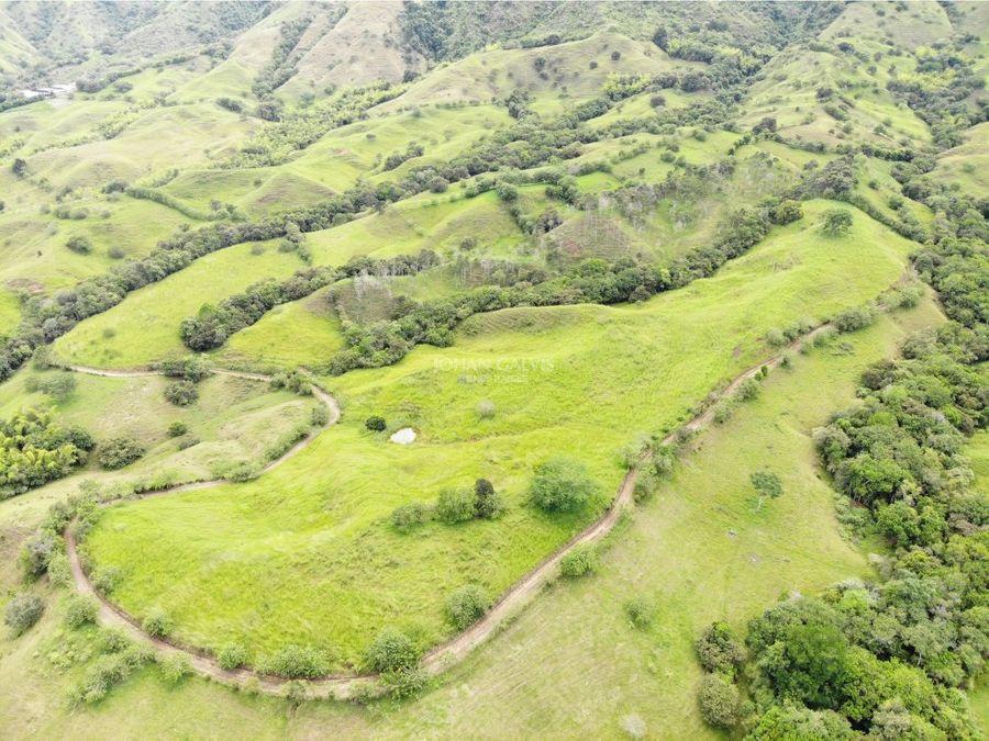 venta finca en quebrada nueva valle 91c