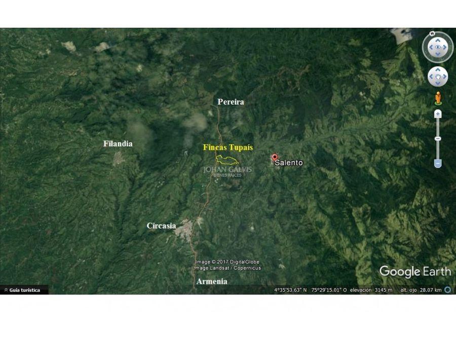 lotes de 6 hectareas para venta en salento