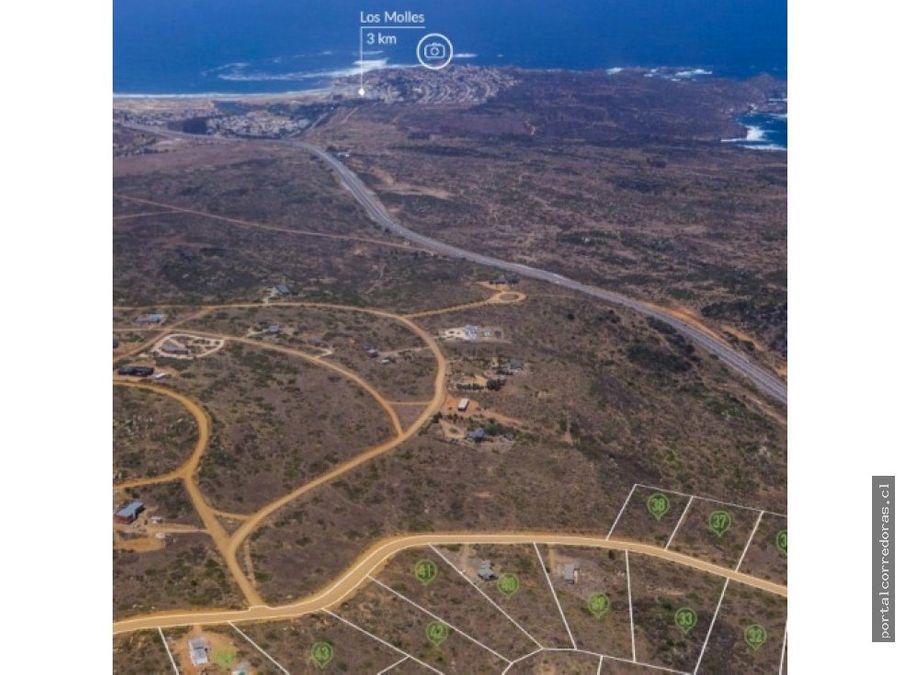 los molles parcela 5000 mts2 luz y agua vista al mar