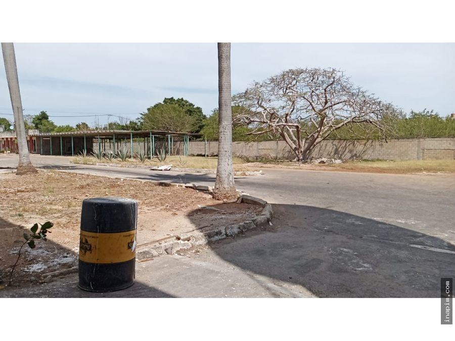 bodega en renta en colonia mayapan