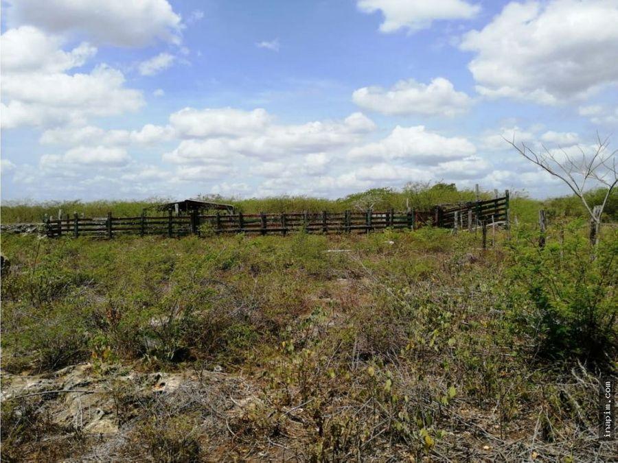venta de rancho en dzilam