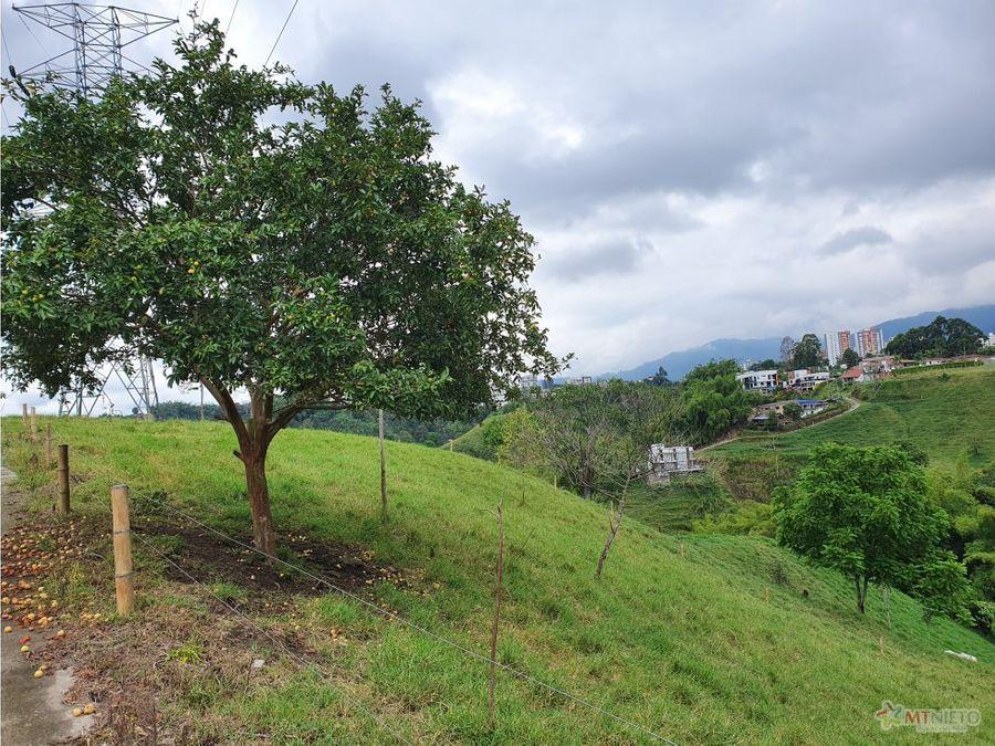 finca ganadera 32 cuadras hojas anchas quindio