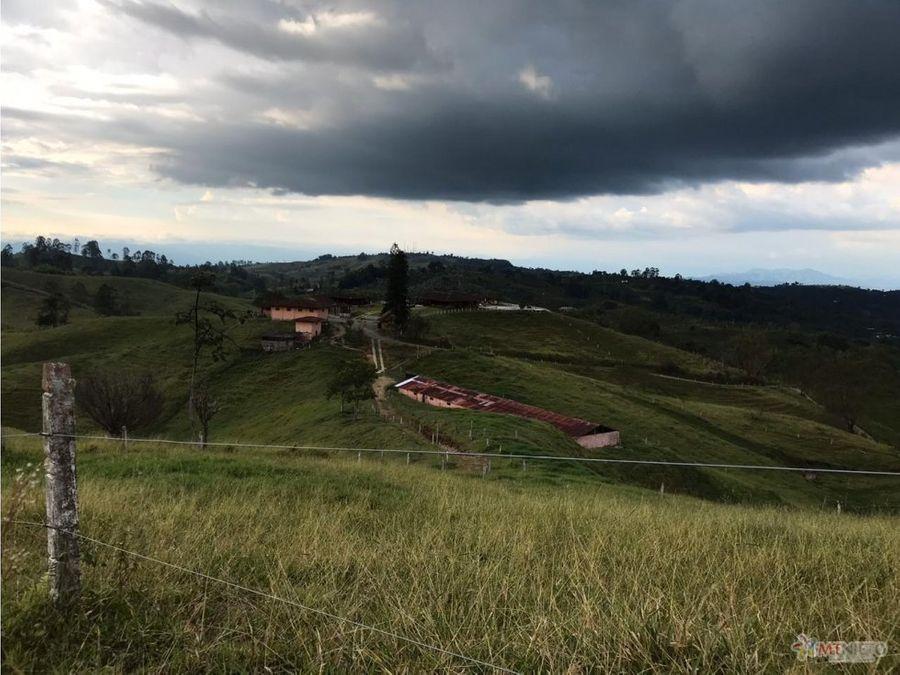 finca ganadera 60 cuadras 2km de sevilla valle