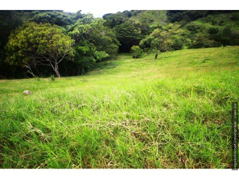 finca ganadera horquetas sarapiqui 64 hectareas