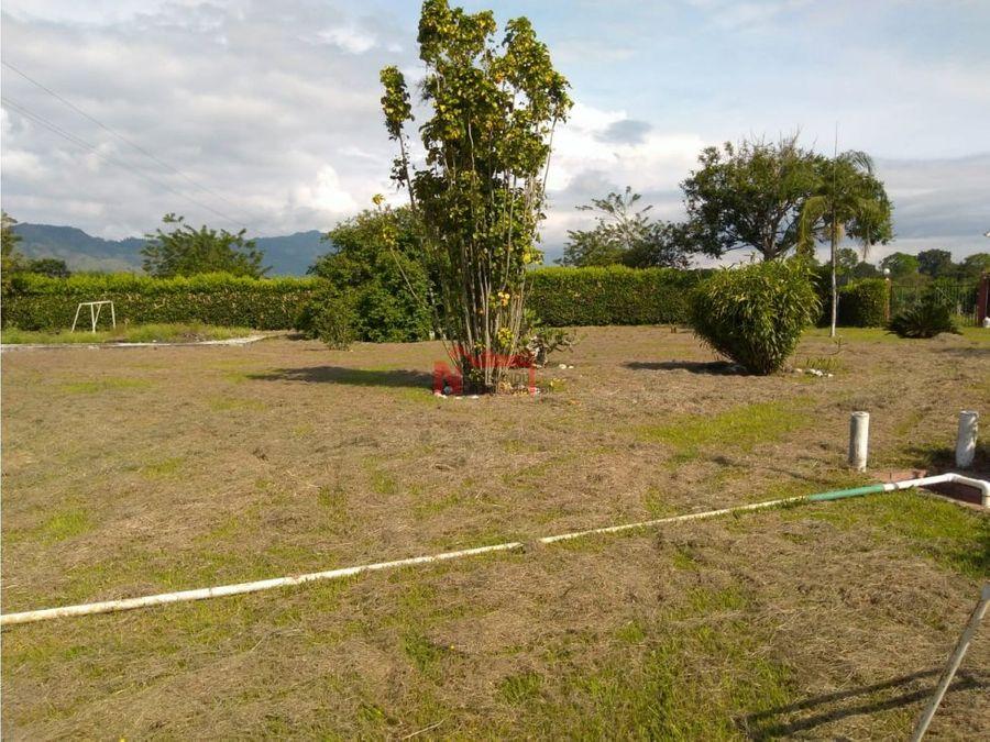 venta finca pueblo tapao cultivo banano y yuca 10 cuadras