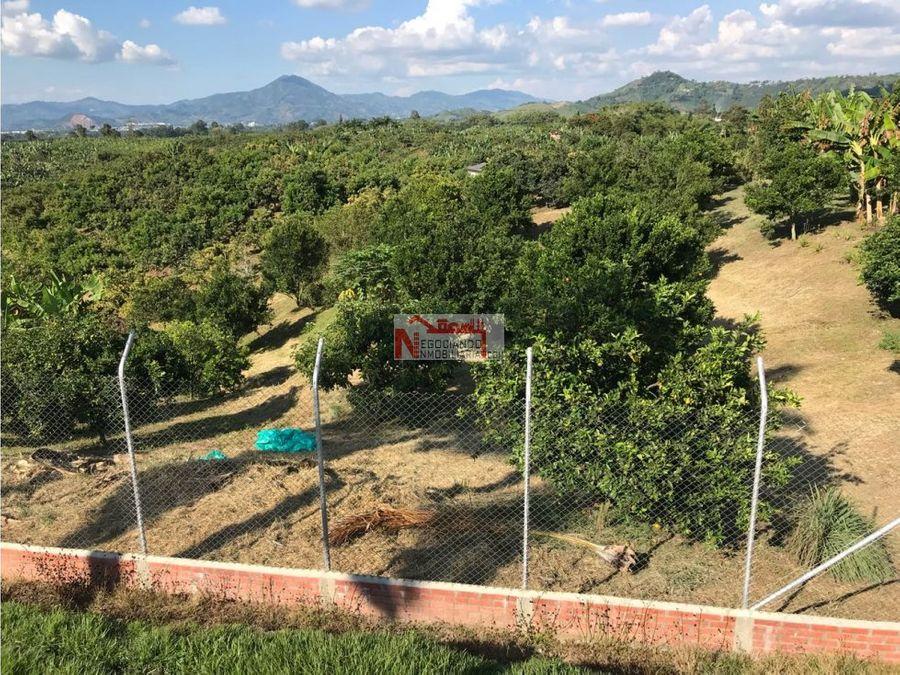 venta lujosa finca via alcala en cultivos