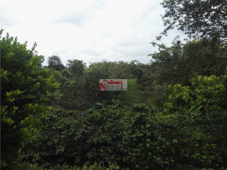 venta chalet via circasia montenegro 1 hectarea
